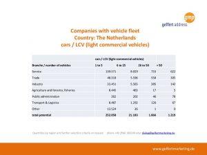 vehicle fleet netherlands (cars and LCV)